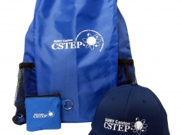 CSTEP_Group